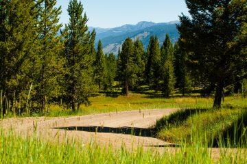 Saul-Creative-Elk-Ridge-Ranch-Lot-8-Lynn-Milligan